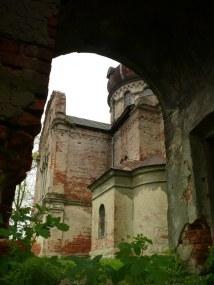 Stary Dzików_P1120655