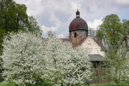 Oleszyce